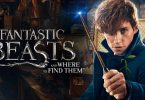 Fantastic Beasts and Where To Find Them Netflix