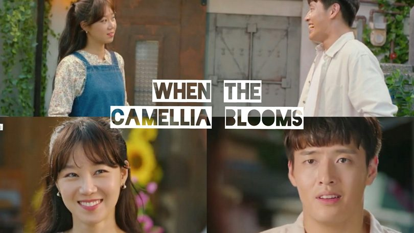 When The camellia Blooms Netflix